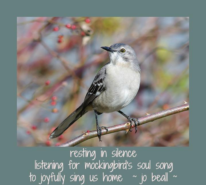 Named Freely Flowing 18 Astonishing Light of Being 2-18-18 Mockingbird
